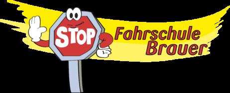 Fahrschule Brauer Frankfurt & Walldorf